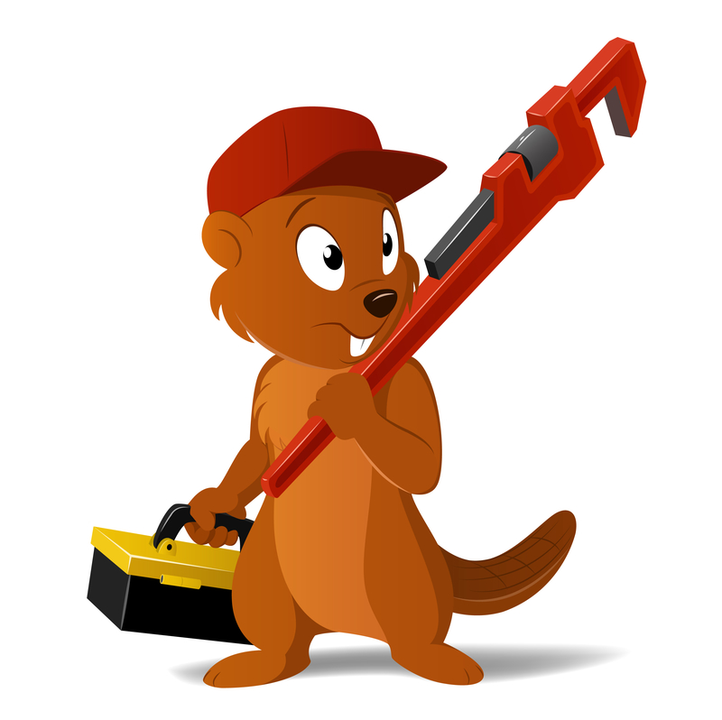 logo_icon/buildstream-beaver.jpg