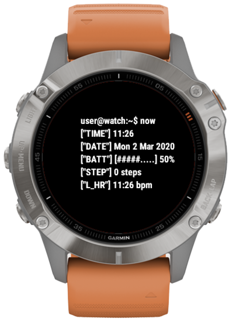 Mockup of TerminalFace on a Garmin Fēnix 6.