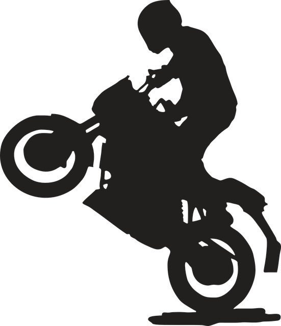 content/post/2018-07-17-rodeo/rodeo-moto.png