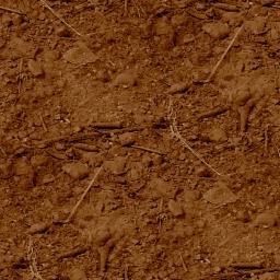 tracks/supertuxresort/textures/earth.png