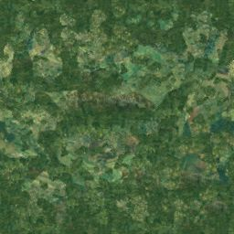 tracks/supertuxresort/textures/grass.jpg