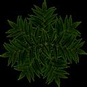 tracks/mystic-island/textures/bush2.png
