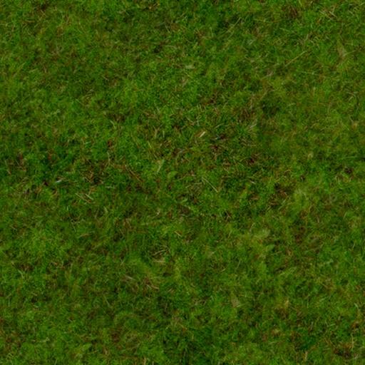 tracks/mystic-island/textures/grass_dark.jpg