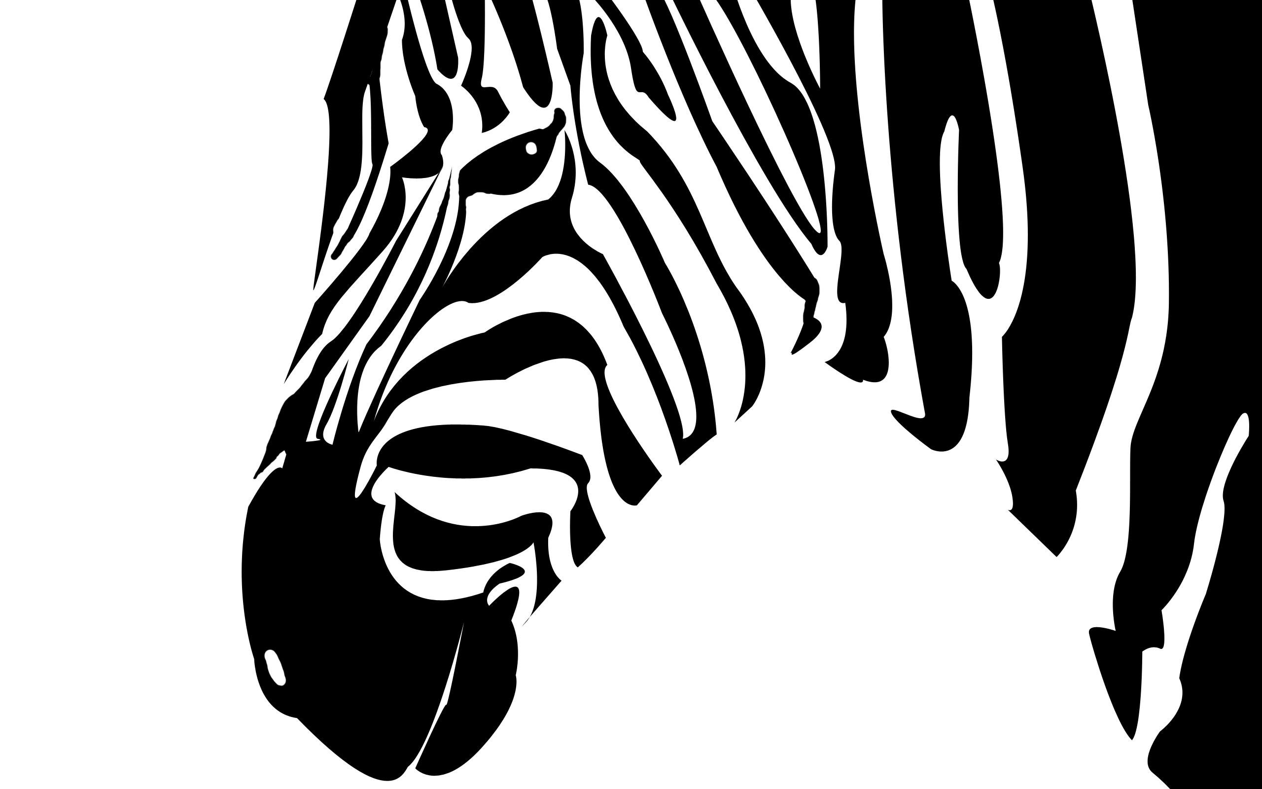 wallpapers/zebra.jpeg