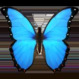 :butterfly:
