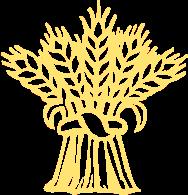 priv/static/static/logo.png