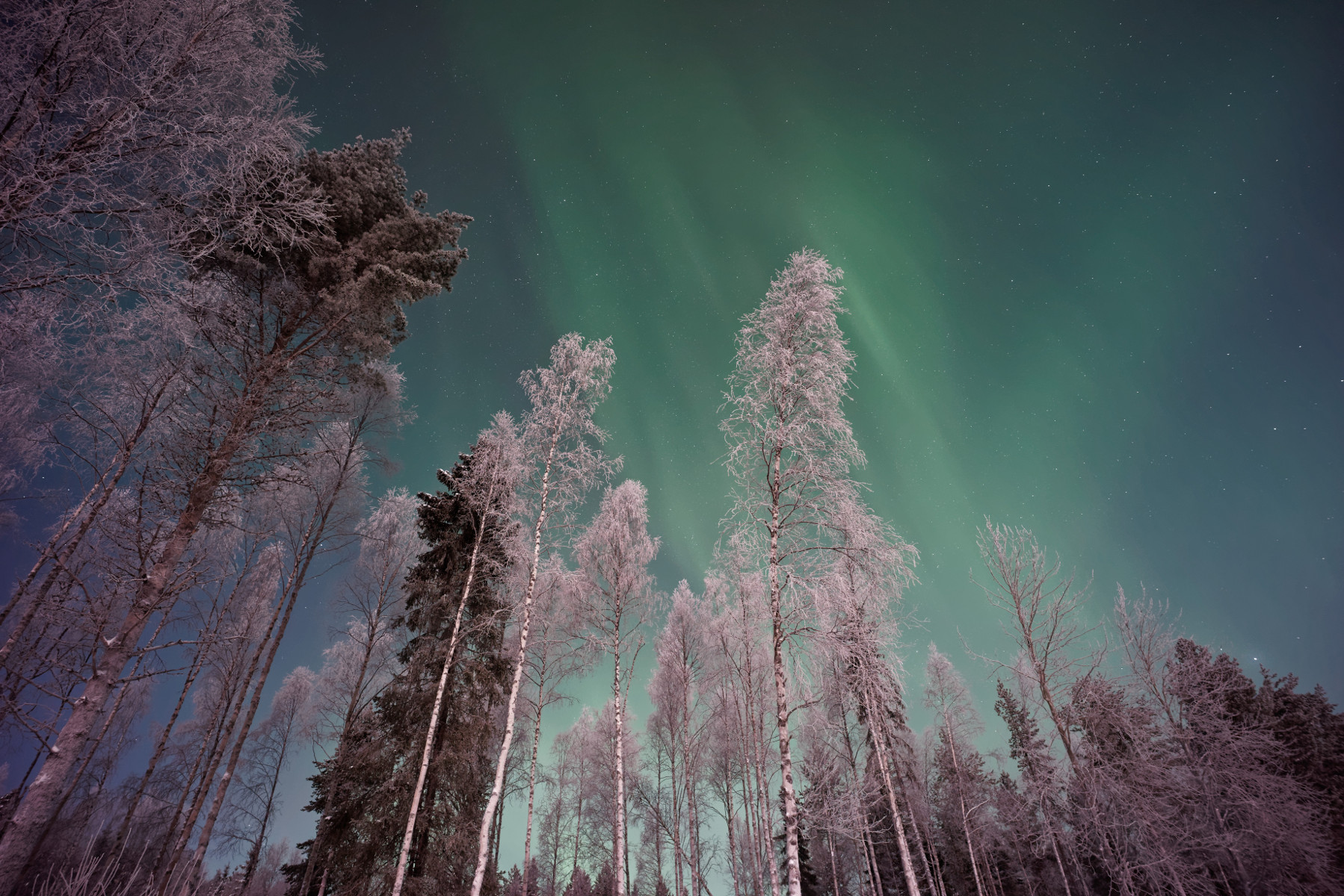 priv/static/static/aurora_borealis.jpg