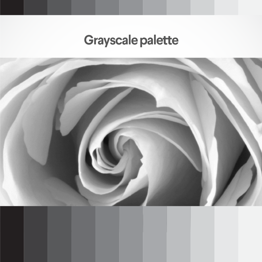 content/images/colour-theory/Grayscale-2-column.png