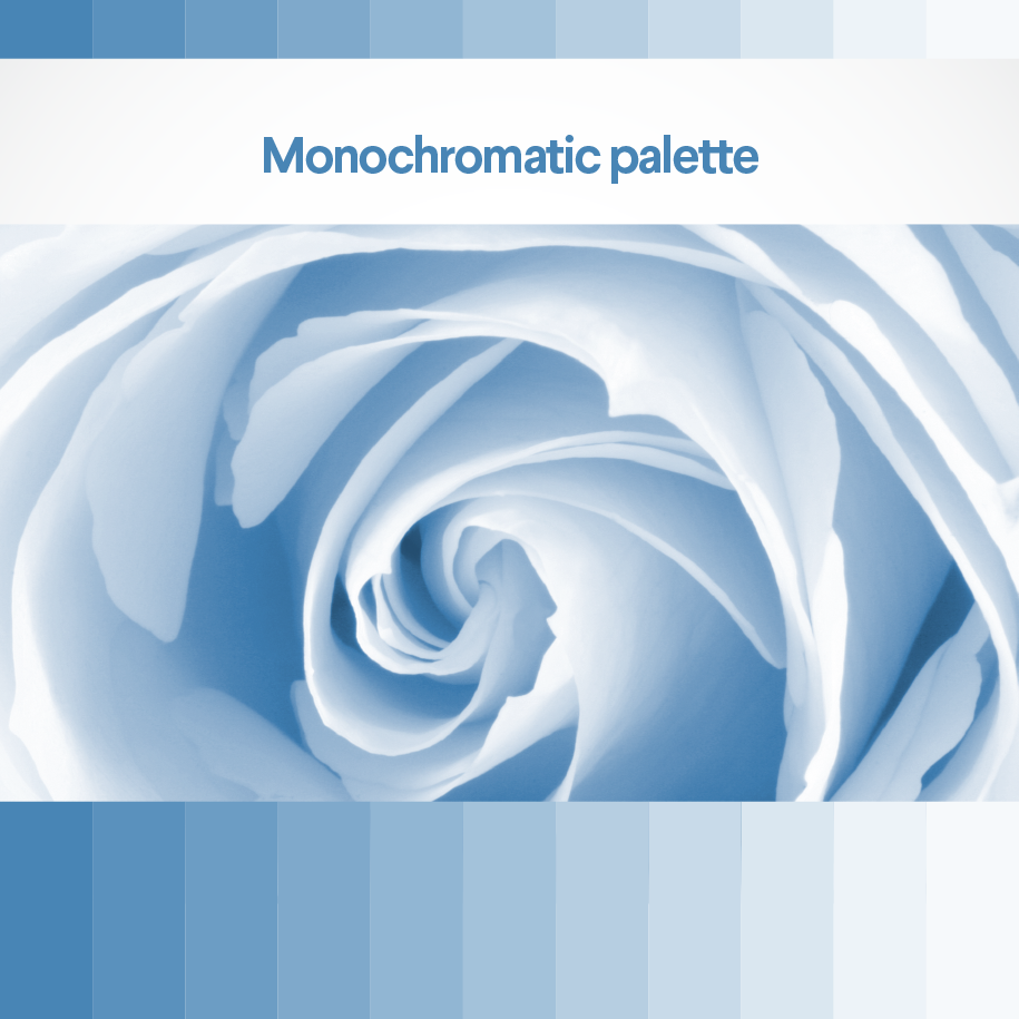 content/images/colour-theory/Monochromatic-2-column.png