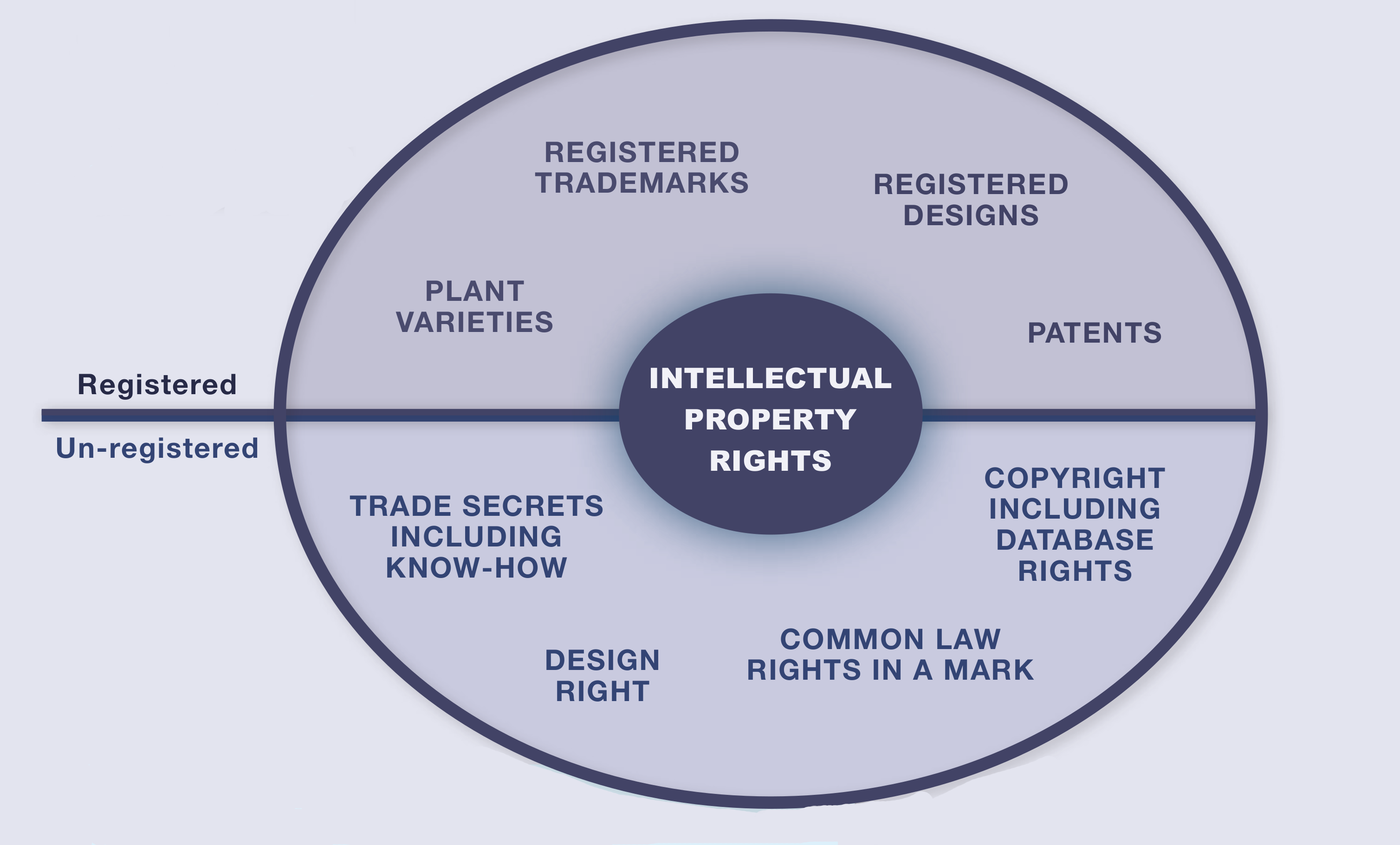 content/images/entrepreneurial-innovation/ip-types.png