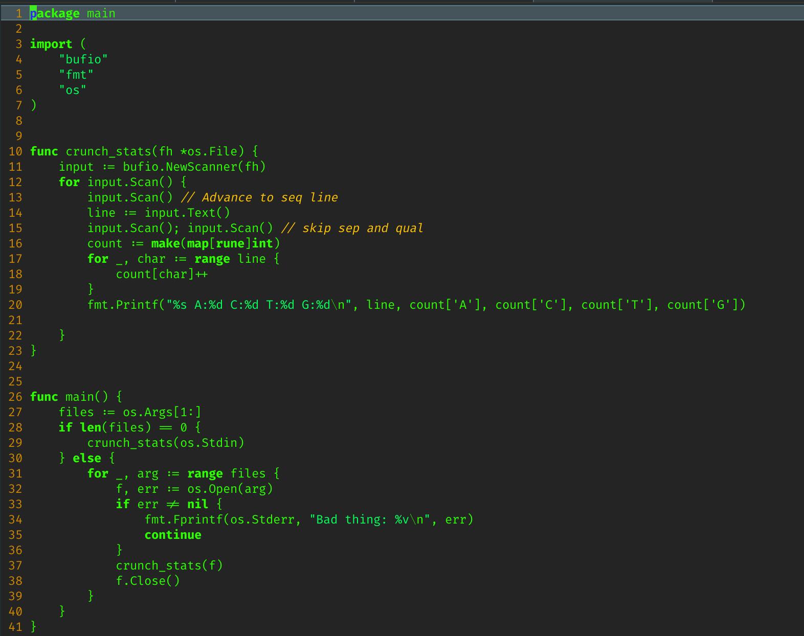 screenshots/golang_term.png