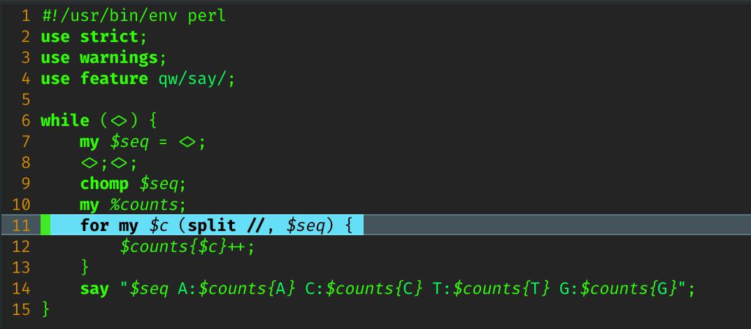 screenshots/perl_term.png