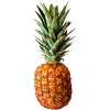 image/pineapple.png