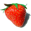 image/strawberry.png