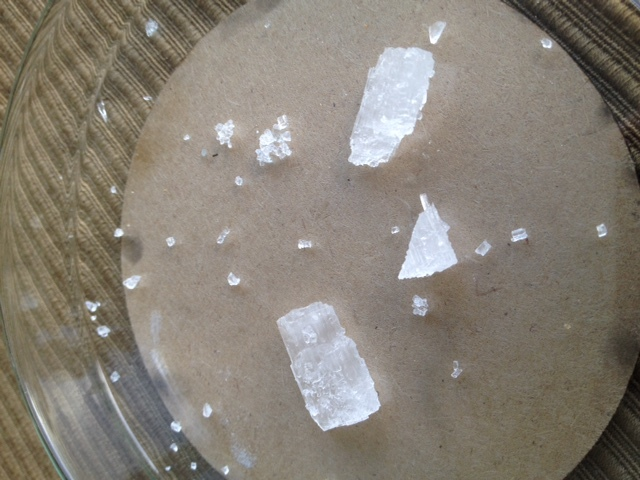 content/projects/crystelling/images/Seedcrystals.jpg