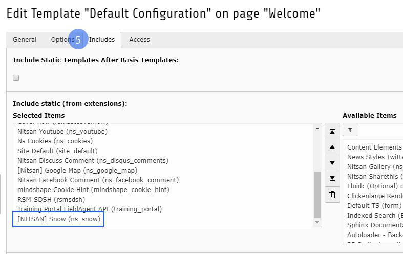 docs/ExtNsSnow/Installation/Images/activate_typoscript.png