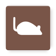 theme/src/main/assets/icons/res/drawable-xxxhdpi/mousetodon.png